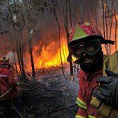 Klimawandel entfacht zunehmend Waldbrände
