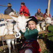 Volksfest lockte Tausende in den Bregenzerwald