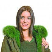 Absoluter Evergreen