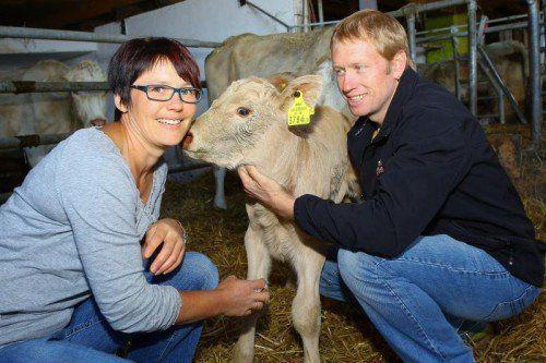 Die Familie Breuss ist Träger des Vorarlberger Tierschutzpreises und züchtet eine robuste Milch- und Fleischrasse: Charolet-Rinder.