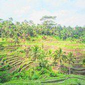 Entspanntes Leben in Indonesien