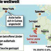 Ebola-Fälle in New York und Mali diagnostiziert