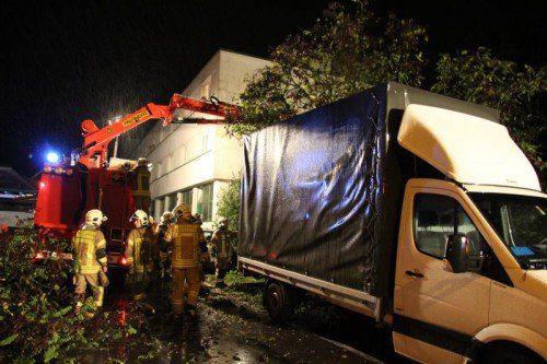 In Lustenau landete ein umgestürzter Baum auf der Plane eines Pritschenwagens. Foto: VOL.AT/Schwendinger