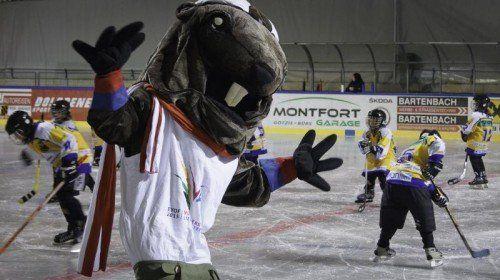 Alpy soll zum Gesicht der EYOF-Winterspiele in Vorarlberg und Liechtenstein werden. Foto: EYOF