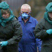 Vogelgrippe auch in England