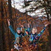 Der farbenfrohe Herbst lockt Naturliebhaber ins Freie