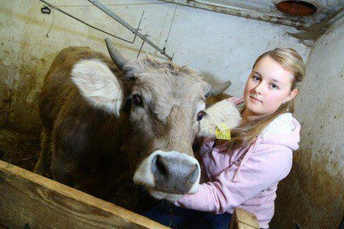 Kalb Kathi ist wieder auf dem Weg der Besserung. Der 15-jährigen Lisa geht die brutale Tat besonders nahe. Foto: VN/Hofmeister