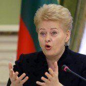 Ukraine plant Referendum über einen NATO-Beitritt