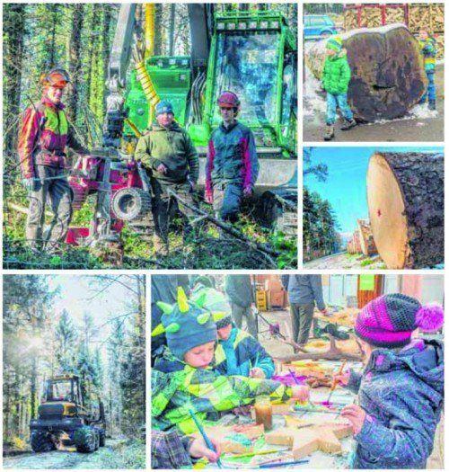 Versteigerung der Wertholzstämme, Verpflegung, Unterhaltung für Kinder und vieles mehr. Fotos: MK