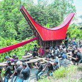 Zeremonien im Toraja-Land