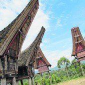 Traditionelle Häuser und Reisspeicher