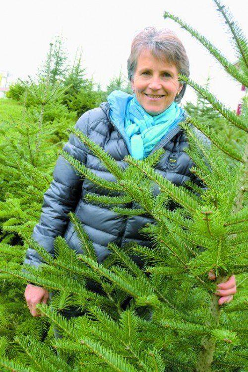 Leidenschaft für die Weißtanne: Balbina Jochum geht mit dem Ländle-Christbaum-Siegel einen eigenen Weg. Foto: Marianne Mathis
