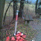 Dringend benötigte Mülleimer in Lustenau