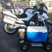 Polizei stoppt motorisierte Kühlbox