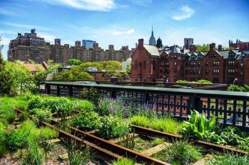 Ein Food-Trend mit viel Potenzial: New Gardening.