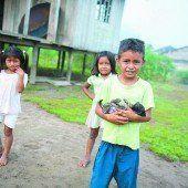 Indigene Völker im Amazonasgebiet