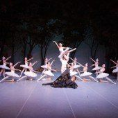 Ballett-Traum: Schwanensee