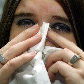 Grippeviren sind im Anflug