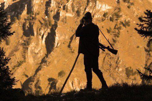 Die Jäger hätten den Wildbestand selbst auf 15 reduzieren müssen, damit man ihnen die Fütterungsstelle nehmen kann. L. Berchtold