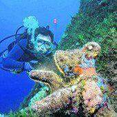 Fische, Wracks und Korallen