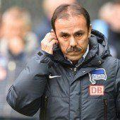 Hertha BSC entlässt Luhukay