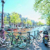 Blühender Frühling in Amsterdam