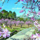 Bummelzug durch Mallorcas Gärten