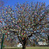 10.000 bunte Eier zieren Apfelbaum in Thüringen