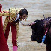 Stierkämpfe sollen Weltkulturerbe werden