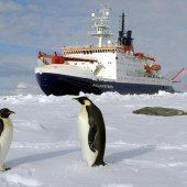 Wegen Schaden kehrt Polarstern zurück