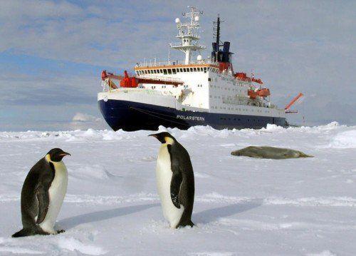 """Das deutsche Forschungsschiff """"Polarstern"""" hat ein technisches Problem.  Foto: dpa"""