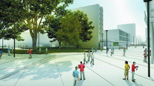 Dornbirn: Ein Fokus der Stadtplanung ist die Stärkung des Zentrums. Die Fußgängerzone Schulgasse ist in Planung – eine Erweiterung des Messeparks sieht man in der Stadtplanung skeptisch. Für Wohnbau und Gewerbe und städtische Einrichtungen stehen ausreichend Flächenreserven bereit.