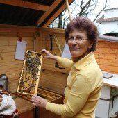 Von den Bienen lernen