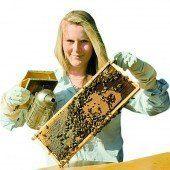 Rettet die Biene