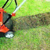 Den Rasen jetzt richtig vertikutieren