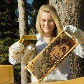 Grüne und FPÖ fordern Engagement für Bienen