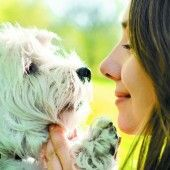 Hundchens Blick lässt Frauchens Herz höher schlagen, und umgekehrt