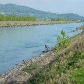 Umweltgruppen orten gute Stimmung für RHESI groß
