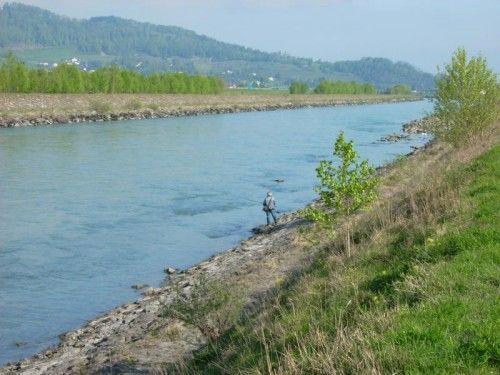 """Der Rhein als Naturlebensraum: Das ist die Vision der Plattform """"Lebendiger Alpenrhein"""".  Foto: Lebendiger Alpenrhein"""