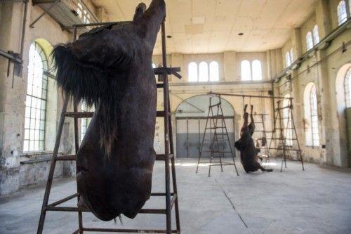 Die historische Montagehalle des Kunstraum Dornbirn bildet Rahmen und Bühne für erstmals gezeigte Werke aus der bedeutenden Serie der Pferde-Objekte.