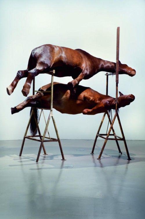 Die historische Montagehalle des Kunstraum Dornbirn bildet Rahmen und Bühne für neu geschaffene und erstmals gezeigte Werke aus der beduetenden Serie der Pferde-Objekte. foto: berlinde de bruyckere/mirjam Devriendt