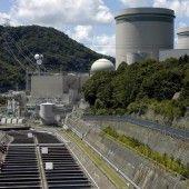 Kernkraftwerk bleibt weiter abgeschaltet