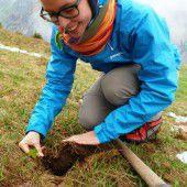 Freiwillige im Waldeinsatz
