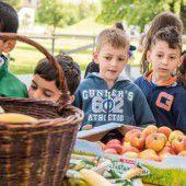 Mehr als 500 Bludenzer Volksschüler freuten sich über eine gesunde Jause