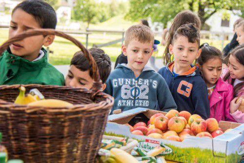 Obst und Gemüse versorgen die Kinder mit wichtigen Vitaminen, Mineralstoffen, Spurenelementen und Ballaststoffen.