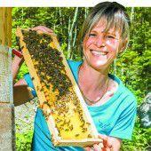 Große Freude über die Erholung der Bienen