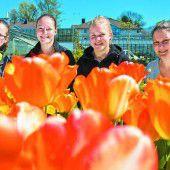 Flower-Power in der Stadtgärtnerei