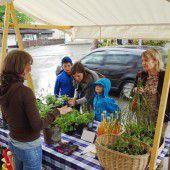 Gartenmarkt mit Tauschbörse in Hohenems