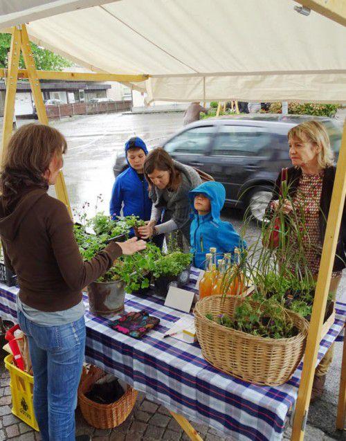 Der Gartenmarkt zog wieder zahlreiche Besucher an.  Foto: tf