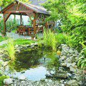 So gestalten Sie den perfekten Gartenteich